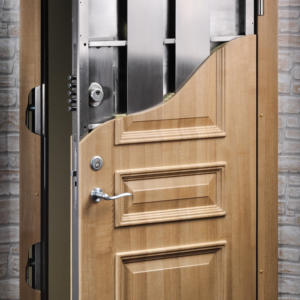 Luxury Door 24