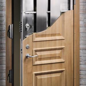 Luxury Door 24
